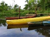 river canoes, tropical river pictures, tropical senery, tropical wallpaper