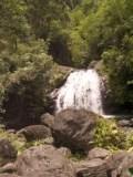 waterfall photos, tropical rainforest, waterfall backgrounds