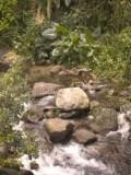 landscape waterfall, tropical pictures, Jamaica waterfalls