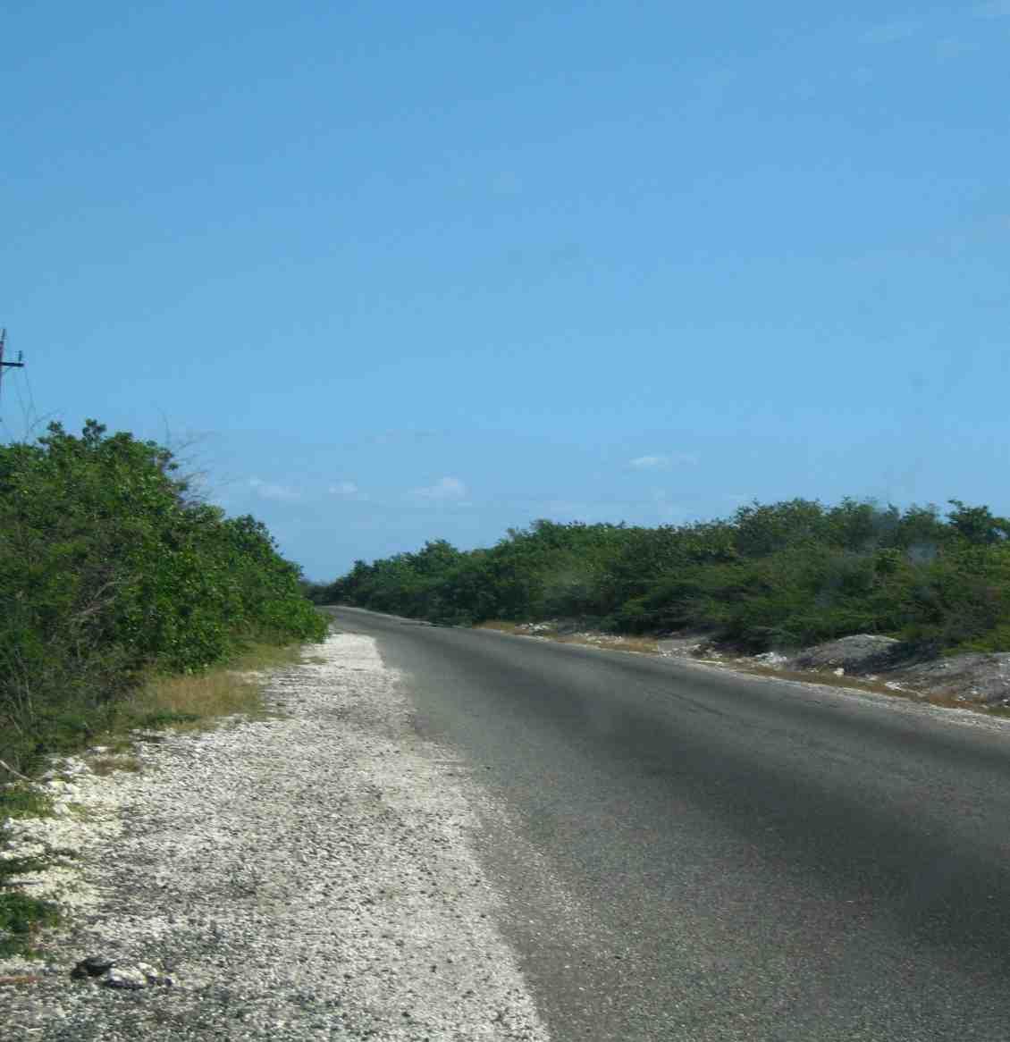 port royal road