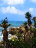 tropical beach background, Jamaica south coast,Portland Jamaica