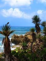 portland coast jamaica, beaches jamaica